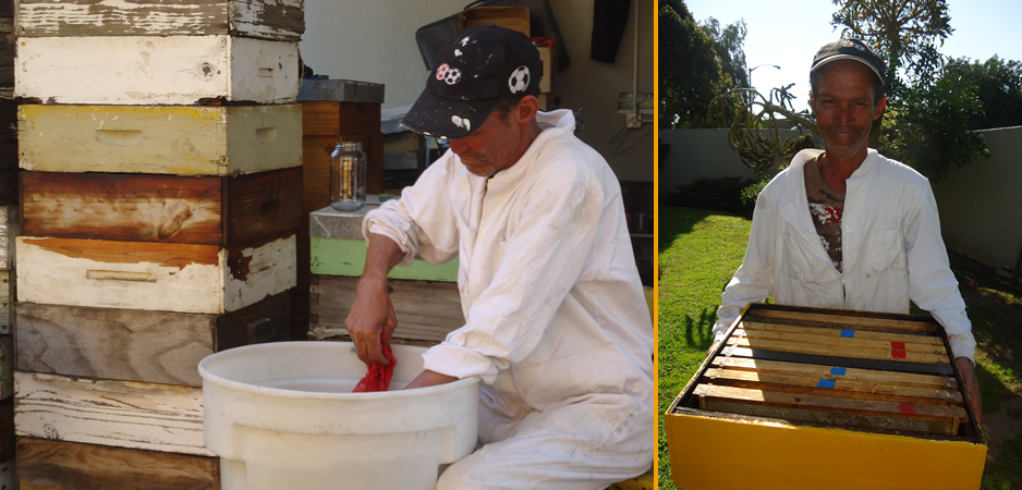 Creating raw honey in the Western Cape - A-1 Honey